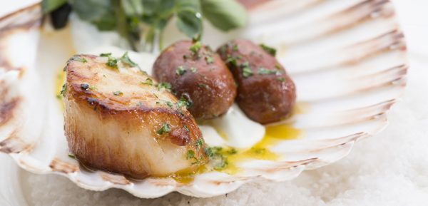 John Paul Photography: Scallops